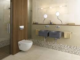 Spa Inspired Bathroom - spa inspired geberit bathroom contemporary bathroom chicago