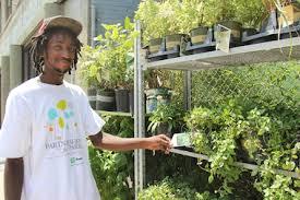 garden design garden design with get started growing easy small
