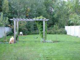 a peak inside my garden gate pergola swing pergolas and swings