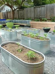 raised veggie garden u2013 exhort me