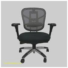 Lumbar Support Chairs Desk Chair Lumbar Support For Desk Chair Elegant Mesh Back Fice