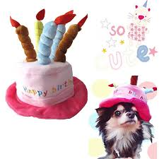 amazon com pet costume dog birthday hats accessory for dogs