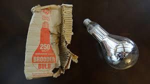old ge 250watt brooder heat light bulb youtube