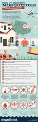 the 25 best prevent mosquito bites ideas on pinterest bugs that
