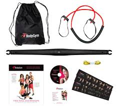 bodygym deluxe portable resistance band home gym with dvds and bag