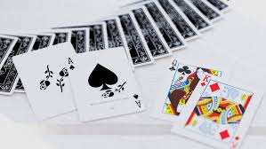black roses cards by daniel schneider kickstarter