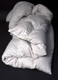 Black Goose Down Comforter Down Comforters Down Home Comforts