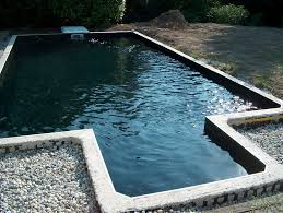 prix chambre canile chambre enfant piscine noir piscine standard noir wateraction vous