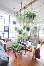 Bedroom Plants 25 Best Plant Rooms Ideas On Pinterest Plants Indoor Plants In