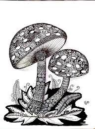 202 best colouring mushrooms toadstools zentangles