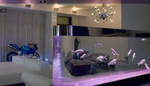 Best Home Aquarium Interior Designs  Fishtanksideas Fishtanks - Home aquarium designs