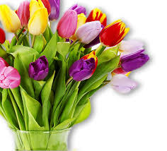 send flower send flowers melbourne flower delivery melbourne fitzroy florist