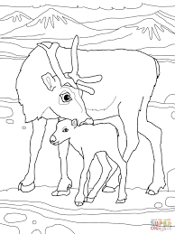 baby reindeer with mother coloring page free printable coloring