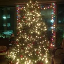 mr jingles christmas trees closed christmas trees 535