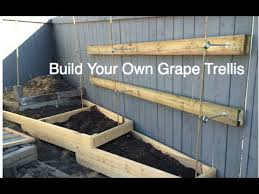 how to make a trellis for cucumbers how to build a simple grape trellis on a residential fence diy in