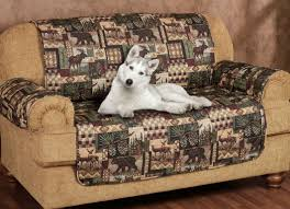 Pet Chair Covers Striking Ideas Sofa Sofa Arresting Sofa With Trundle Sleeper Rare