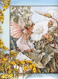 birthstones fairies lady cottington u0027s pressed fairy book best book ever funny