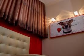 chambre pour chien un classieux hotel pour chiens au brésil jol journalism