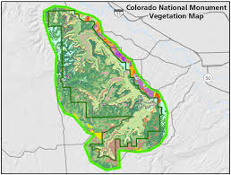 Colorado vegetaion images Vegetation mapping in the northern colorado plateau network jpg