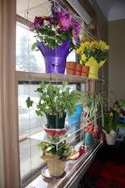 Kitchen Garden Window Ideas 100 Small Garden Window Great Idea For A Small Succulent