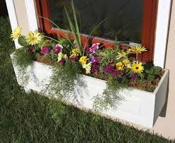 What To Plant In Window Flower Boxes - window box planting plans horticulturehorticulture