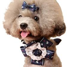 dog ribbon anchor ribbon cotton lace corsage dog bow hair free