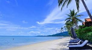 browse spg hotel offers and packages starwood hotels u0026 resorts