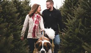 newly wed christmas card 30 newlywed christmas card ideas shutterfly