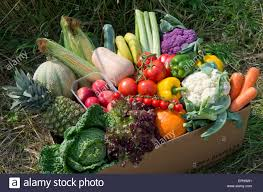 fruit delivered to home a seasonal veg box including fruit and vegetables ready to be