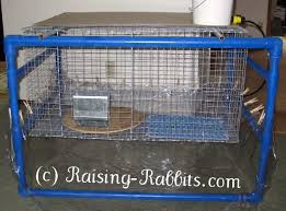 indoor rabbit cage how to set up your indoor rabbit hutch and cage