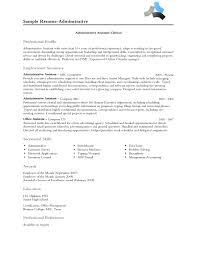 professional profile resume examples berathen com