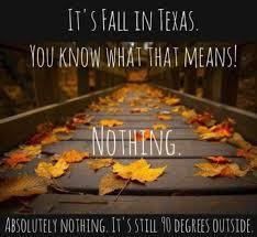 Texas Meme - 18 best dallas fort worth memes