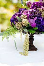 19 best flores images on pinterest flowers purple flowers and