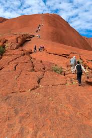 what can native australian plants teach us about business 7 obvious reasons why you shouldn u0027t climb sacred site in australia