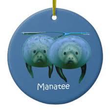 manatee ornament my zazzle manatee and manatee