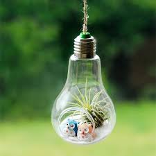 hanging lightbulb air plant terrarium with owls air plants