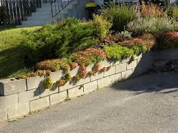 Wall Garden Ideas by Inspiring Cinder Block Wall Garden 51 For Your Home Decoration