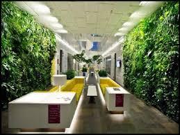 indoor vertical succulent garden net for gallery including office