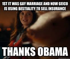 Gay Marriage Memes - blog 7 memes and fallacies english 305