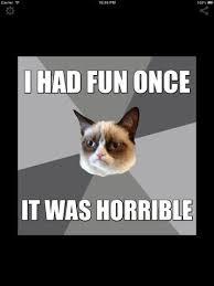 Grumpy Cat Meme I Had Fun Once - beautiful mrdangermemecreator s imgflip wallpaper site wallpaper