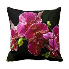 49 best best online shopping sites for home decor images on