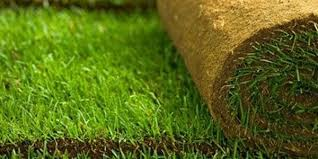 Sod Estimate by Sod Installation Householdhelpinghands