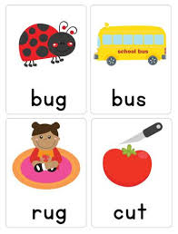 words cards cvc word flash cards busy bugs