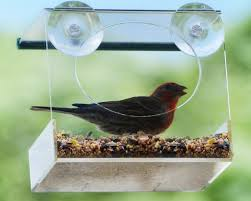 clear plastic window bird feeder bird feeder wholesale bird feeder wholesale suppliers and