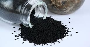 black seed for hair loss black seed oil for hair how kalonji can prevent hair loss grey hair