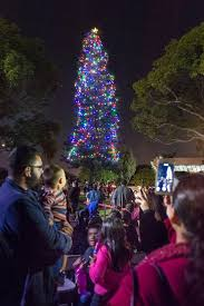 west anaheim lights up christmas tree welcomes holidays with