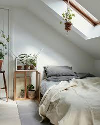 plantes dans la chambre voulez vous un meilleur sommeil ajoutez ces plantes d intérieur à