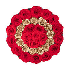 preserved roses last one year gold letter o preserved roses the only roses