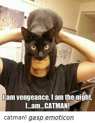 Gasp Meme - am vengeance i am the night iamcatman catman gasp emoticon