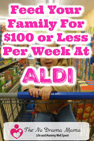 feed your family for 100 or less by shopping at aldi shopping